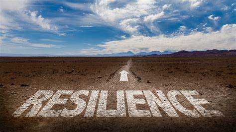 RESILIENCY BUILDING AS A MEANS TO PREVENT PTSD AND RELATED ADJUSTMENT PROBLEMS IN MILITARY PERSONNEL